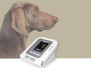 Blutdruckmessgeräte für Hunde