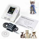 Blutdruckmessgeräte für Katzen